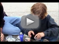 חבורת הרשעים!!! גרמו ליונים לשלשל על עוברי אורח בחוף הטיילת