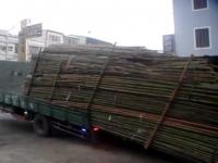 משאית פורקת סחורה בדרך הכי מהירה!