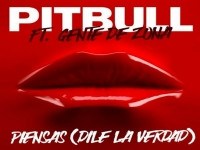Pitbull ft. Gente De Zona - Piensas