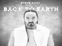Steve Aoki feat. Fall Out Boy - Back To Earth