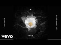 Avicii ft. Sandro Cavazza - Without You
