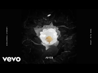 Avicii ft. Rita Ora - Lonely Together