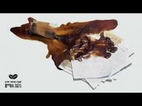 קפה שחור חזק מארחים את כהן, מושון - בקלות