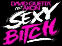 David Guetta Feat Akon - Sexy Bitch
