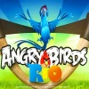 משחקים אנגרי בירדס ריו - Angry Birds Rio