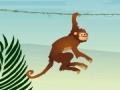 הקוף הקופץ - Jumper