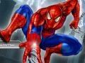 משחק Spiderman City Raid ספידרמן
