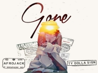 Afrojack ft. Ty Dolla $ign - Gone