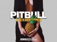 Pitbull, Stereotypes  ft. E-40, Abraham Mateo - Jungle