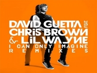 David Guetta - I Can Only Imagine ft. Chris Brown, Lil Wayne