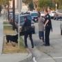 מזעזע: שוטר יורה למוות בכלב שמנסה לעזור לבעלים שלו