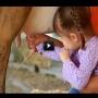 צפו: איך לחלוב חלב מהפרה