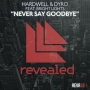 Hardwell & Dyro feat. Bright Lights - Never Say Goodbye