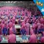 תעשיית הבשר בעולם