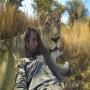בתוך חייהם של האריות והצבועים עם מצלמת GoPro