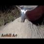 צפו: איך נראה המבנה של קן נמלים מתחת לאדמה