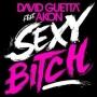 David Guetta Feat Akon - Sexy Bitch