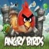 ציפורים כועסות Angry Birds