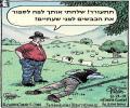 ספירת כבשים